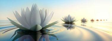 pleine-conscience-spiritualite-lahochi-paris-77-outil-texte-guide-meditation-mindfulness