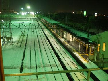 黒井駅の自由通路から犀潟方面を望む。雪に浮かぶ一直線のレールに、丸まっていた背中もスッと伸びました(画像をクリックして拡大)