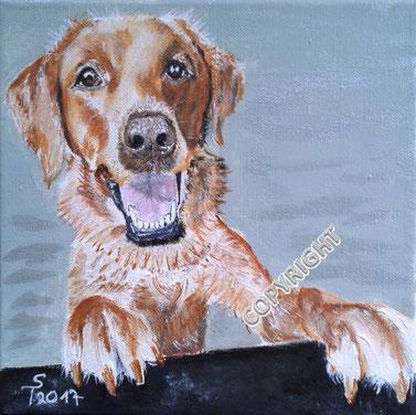 Golden Retriever: Hund stützt sich mit Pfoten auf einer Mauer ab und schaut mit geöffnetem Maul den Betrachter an. Das Fell des gemalten Hundes ist blond, Tiermalerei, gemalte Tierportraits nach Fotovorlage, Tiere zeichnen lassen