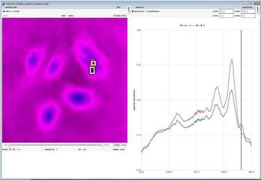 Spektroskopie - Anwendungen und Produkte