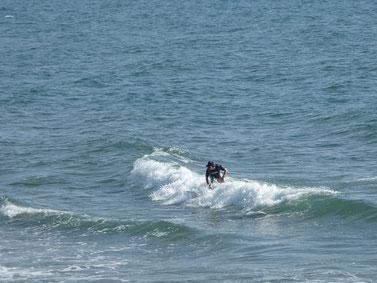 乗れそうな波を逃さず!
