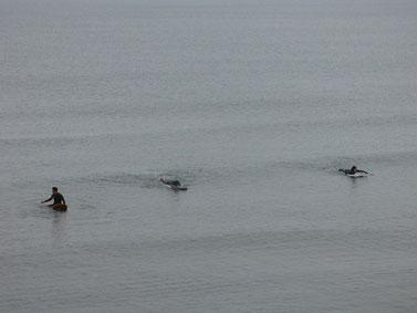 かなり小波だったのでしっかり波を追っかけて、パド練になりました!