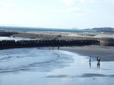 暖かくなって海に遊びに来る人も多くなってきましたね。