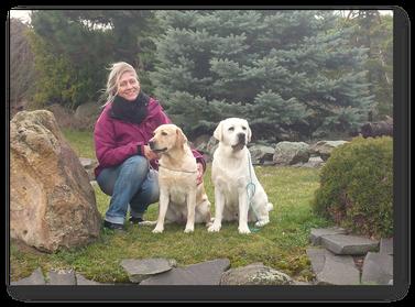 Labrador Retriever Züchter