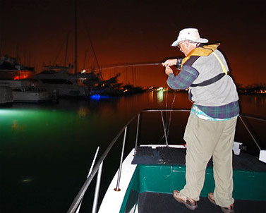 Fly Fishing San Diego Bay at Night