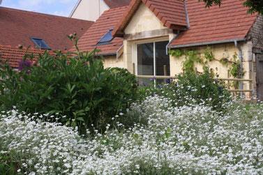 Au printemps le jardin est en fleurs