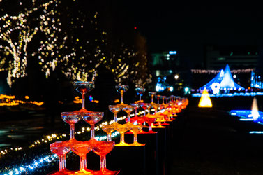 昭和記念公園 イルミネーション