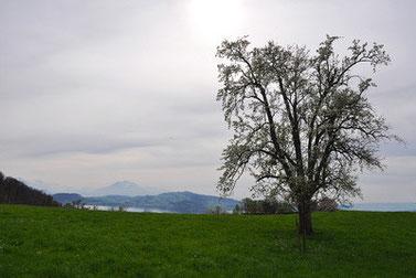 MooslehenKlause Ausflugstipps bei Regenwetter in Schönau am Königssee