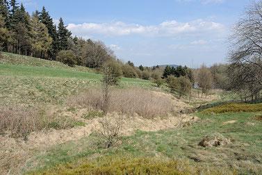 Foto: Das Trüllketal im Frühjahr 2013.