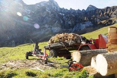 Holzhaufen, Scheite, Spaltmaschine