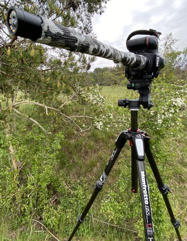 Das Laowa 24mm Probe im Einsatz.