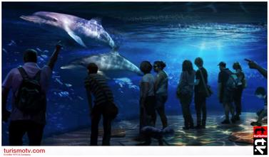 Odisea en el Océano de National Geographic: