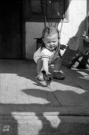 1958-Pollo-Carlos-Diaz-Gallego-asfotosdocarlos.com