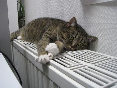 chauffage optimisé dans votre habitation du 47