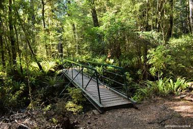Kepler track depuis Te Anau - Nouvelle-Zélande