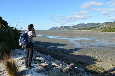 - La mer est basse à Nelson - Nouvelle-Zélande -