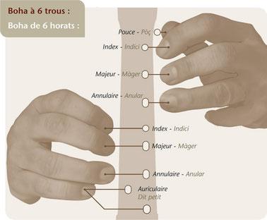 """Position """"6 trous"""" - Extrait méthode de boha BdG 2011"""