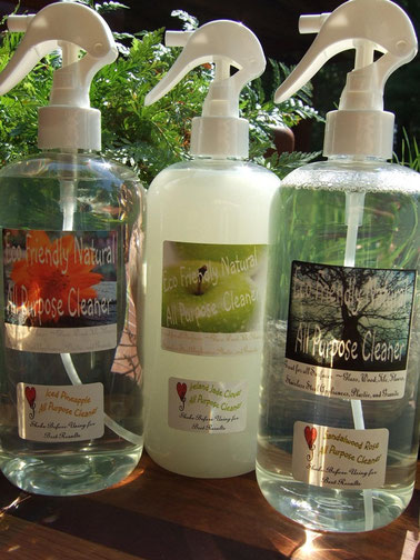 Eco Friendly Cleaning Solutions