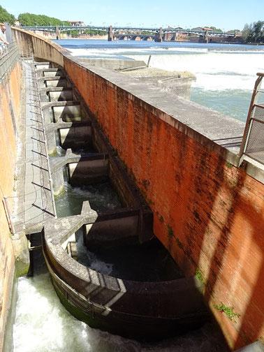La passe à poissons qui leur permet de remonter le fleuve