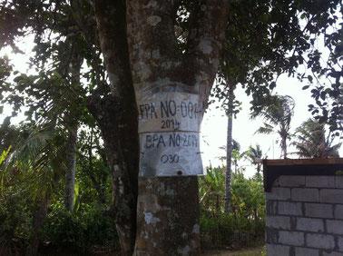 Beschriftung an Baum geheftet
