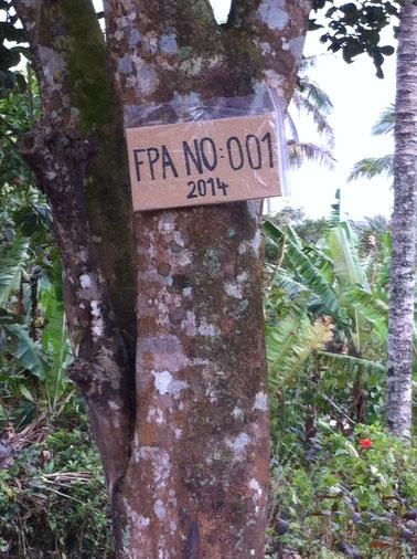 Eine beschrifteter karton am Baum