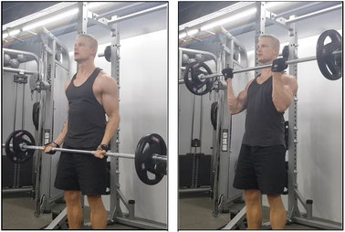 Bicep biceps workout exercise bicep curl hammer curl gym fitness barbell