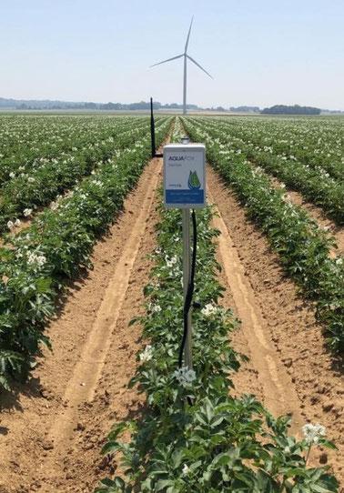 aquafox, sonde capacitive, humidité du sol, agralis