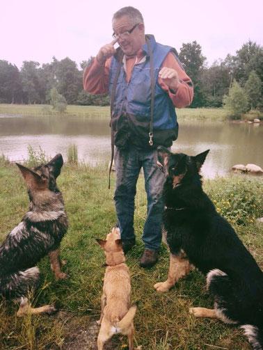 Hundeexperte Günter Ostermeier bei der Arbeit