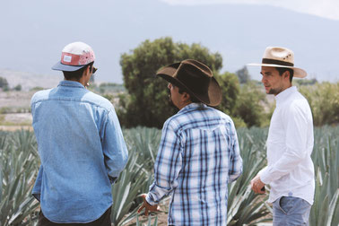 How to drink Mezcal with friends