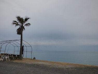 今日は午後から曇ってどんよりでした・・