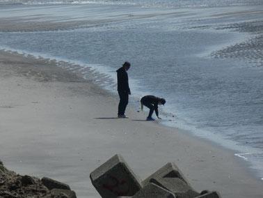 とおちゃんとビーチコーミング