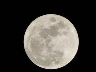 昨夜の満月 明るかった~~