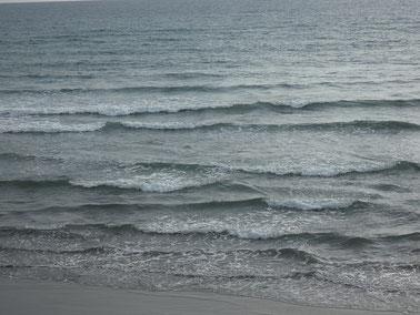 最後は風で面ガタ、波間狭くなっちゃいました(涙)