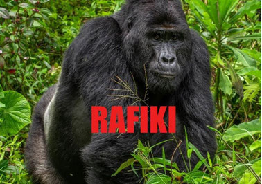 Foto: Uganda Wildlife Authority