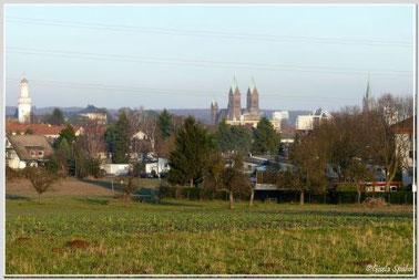 Schloss, evgl. Erlöserkirche und kath. Kirche St. Marien