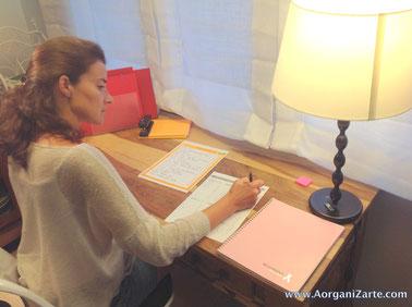 orgniza los proyectos en curso - AorganiZarte.com