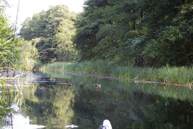 Start zur Vier-Seen Rundfahrt