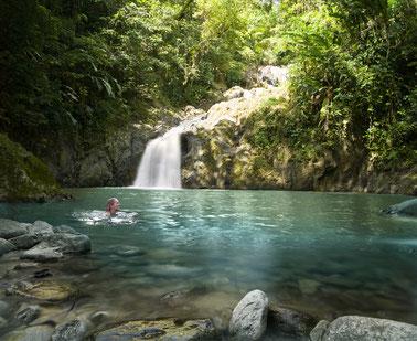 Argyle Wasserfall Trinidad Tobago, Karibik, Karibische Inseln