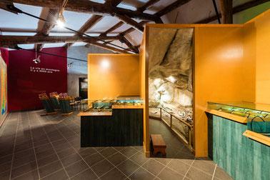 Vue partielle de l'exposition consacrée à la vie en montagne au Néolithique