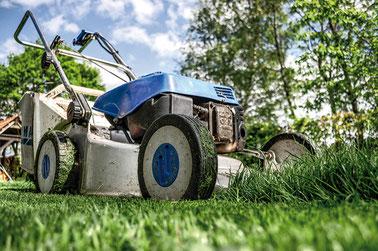 Difficile d'accepter de voir son jardin se dégrader lorsqu'on l'a bichonné toute sa vie. Il est possible de faire appel à un agent d'entretien qui effectuera les tâches les plus lourdes. Crédit photo : Pixabay© Skitterphoto