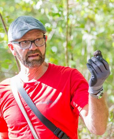 «Wer Trüffel finden möchte, muss die Natur und ihre Pflanzen kennen»: Trüffelexperte Pius Bodenmann mit einem Trüffel. Foto: Fabio Baranzin