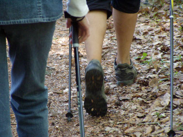 Nordic Walking Kurs