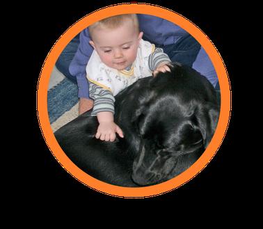 Assistenzhund mit Assistenzhundetrainer und Jule im Einsatz.Therapiehund  Assistenzhunde Autismusbegleithunde für jule sie sind zu finden in kitzingen. Unsere Autismusbegleithunde werden auch nach Österreich und in die Schweiz  vermittelt.