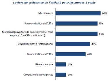 leviers de croissance e-commerce en France