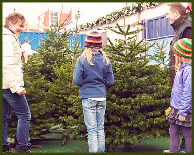 Weihnachtsbaumverkauf Bremen