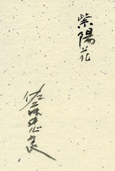 佐藤忠良・紫陽花・サイン