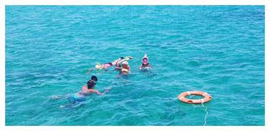 Schnorcheln am Riff vor Boa Vista auf der Fish, Chill & Grill Tour mit Boa Vista Tours