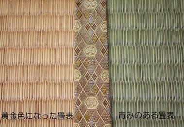畳 縁の選び方