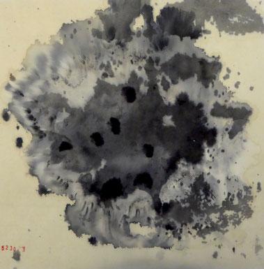 Photo Assembly 21 X 29 cm