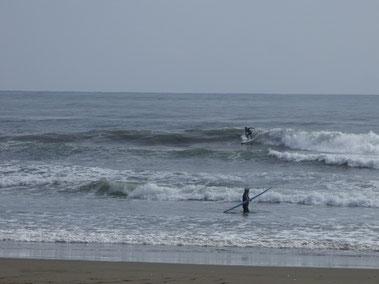 土曜だけ合流のTKTN 早い波にチャージしてました。